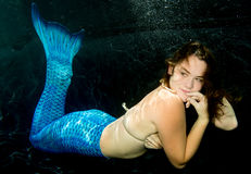 Сказ бикини и русалки раковины женщины нося Стоковое Фото