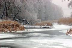 Сказ зимы Стоковые Фотографии RF