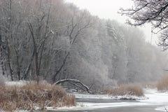 Сказ зимы Стоковые Фото