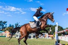 Скакать женщины лошади чистосердечный Стоковые Фото