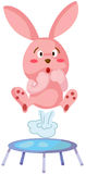 Скакать кролика Стоковое Изображение