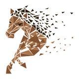 Скакать частицы лошади иллюстрация штока