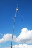 скакать bungee Стоковые Изображения RF