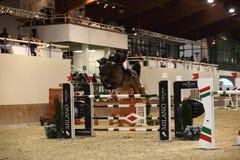 Скакать vermezzo выставки зимы милана Стоковая Фотография RF
