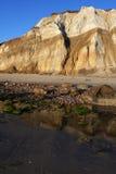 скала бледная Стоковая Фотография