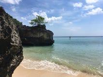 Скала на белом пляже стоковые изображения