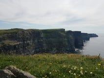 Скала открытого моря скалистая стоковые фото
