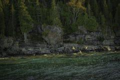 Скалистая береговая линия выровнянная с деревьями стоковое изображение rf
