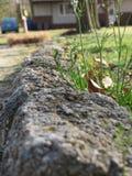 Скалистая дорога стоковые изображения