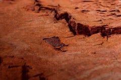 Скалистая поверхность планеты повреждает с видимыми долинами Стоковая Фотография