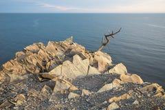 Скалистое побережье Чёрного моря, Краснодар Krai, Anapa, Bolshoi Utrish, Россия Стоковое Фото