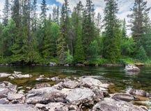 Скалистый берег и зеленый цвет украшают на реке, графстве Jamtland, s Стоковая Фотография