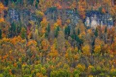 Скалистый ландшафт во время осени Красивый ландшафт с камнем, лесом и туманом Заход солнца в чехословакском национальном парке Ce Стоковые Фотографии RF