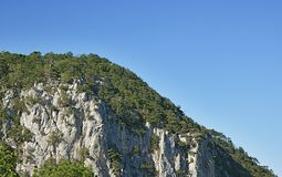 Скалистый лес скалы против чисто неба Стоковые Изображения