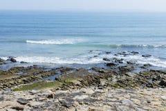 Скалистый пляж с туманом предпосылки Стоковые Изображения RF