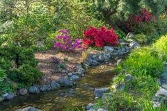 Скалистый поток сада стоковые фото
