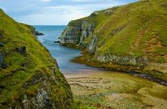 скалы северная Шотландия Стоковое Фото