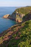 скалы brittany плавают вдоль побережья сценарный взгляд Стоковое Фото