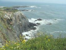 скалы Nova Scotia стоковое изображение rf