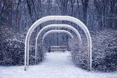 Скамейка в парке в зиме Стоковые Фотографии RF