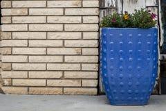 Скамейка в парке города общины около декоративного плантатора стоковое фото
