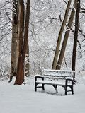 Скамейка в парке в древесинах зимы стоковые фото