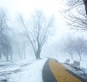 Скамейка в парке и деревья в тумане Стоковые Фотографии RF