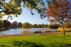 Скамейка в парке озером в падении Стоковое Изображение