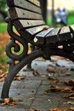 Скамейка в парке Стоковая Фотография RF