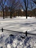 Скамейка в парке berried в снеге в Central Park стоковые изображения