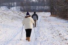Скандинавский/нордический идущ snowshoeing на следе в зиме Группа людей наслаждаясь snowshoeing на следе Поход в крайности стоковые изображения rf