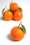 скатерть крупного плана clementine стоковые фотографии rf