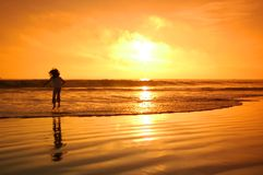 скача заход солнца Стоковые Фотографии RF
