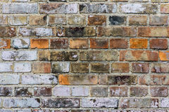 Скачками кирпичная стена стоковые фотографии rf
