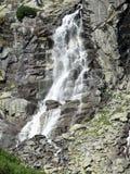 Скачка водопада Стоковая Фотография