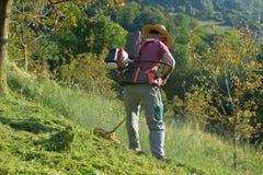 скашивание травы Стоковое фото RF
