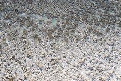 Скала в Birling зазоре, Великобритания Стоковое Изображение
