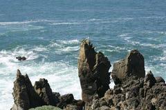 Скала океана Стоковое Изображение RF