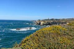 Скала пляжа Santa Cruz Тихий Океан Стоковое Фото