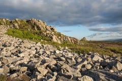 Скалистая вересковая пустошь на вечере поздним летом Стоковое Изображение