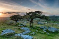 Скалистая вершина Coombestone на Dartmoor стоковое изображение rf