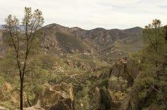 Скалистая западная перспектива горы Стоковая Фотография