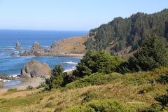 Скалистая Тихая океан береговая линия Стоковые Фотографии RF