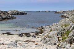 Скалистое побережье на острове Karmoy, Норвегии Стоковое Изображение RF