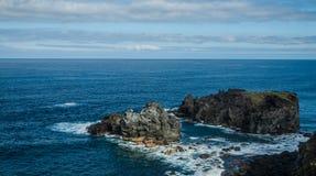 Скалистое побережье около Ла Rambla Сан-Хуана de Стоковая Фотография RF