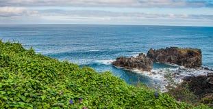 Скалистое побережье около Ла Rambla Сан-Хуана de Стоковое Изображение RF