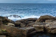 Скалистые берега Coogee приставают к берегу, Сидней Австралия Стоковое Изображение RF
