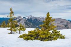 Скалистые горные виды Стоковое Изображение RF