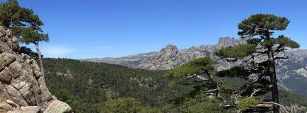 Скалистые холмы в горах Col de Bavella, Корсике, Франции стоковая фотография