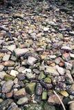 Скалистый берег Стоковое Изображение RF